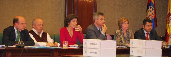 grupo socialista pleno enero 2012